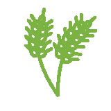 src/main/sourceapp/1/images/barley.png