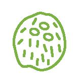 src/main/sourceapp/1/images/coconut.png