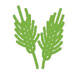 src/main/sourceapp/1/images/wheat.png